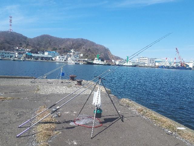 f:id:tsuribaka-haru:20200329213450j:plain