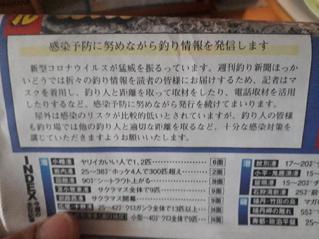 f:id:tsuribaka-haru:20200429143259j:plain
