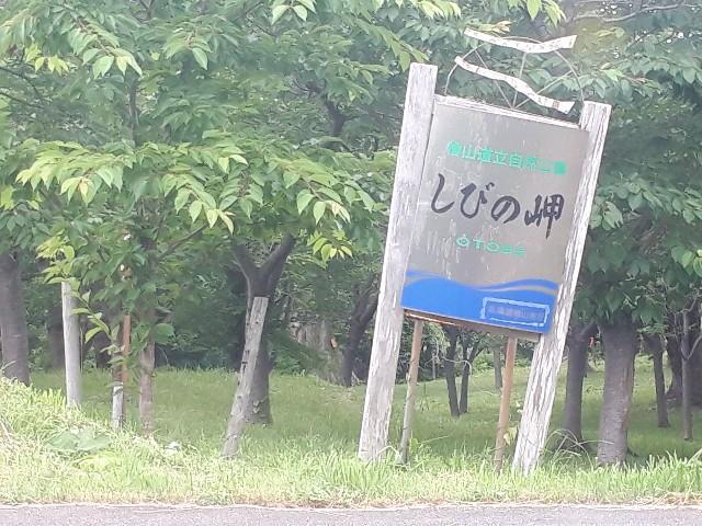 f:id:tsuribaka-haru:20200728222828j:plain