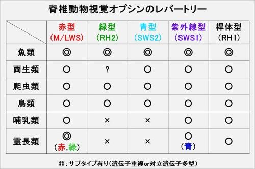 f:id:tsuridane:20180531062729j:plain