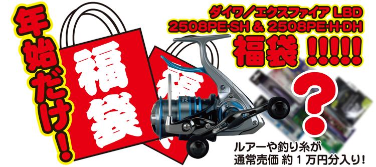 f:id:tsuriguten5280:20161230124255j:plain