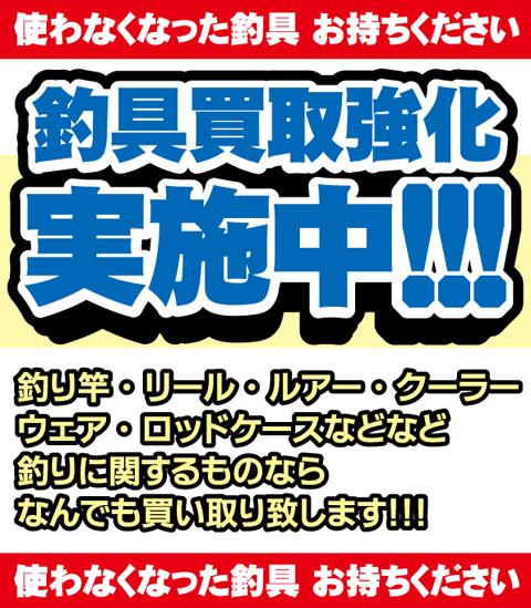 f:id:tsuriguten5280:20190601150211p:plain