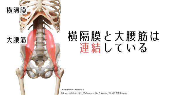 f:id:tsurishu:20170607095751j:plain