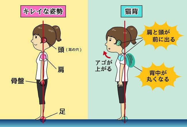 f:id:tsurishu:20170611113419j:plain