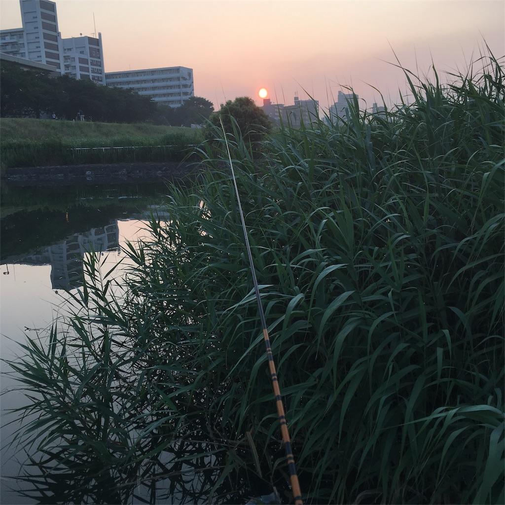 f:id:tsuritsuri:20170709203250j:image