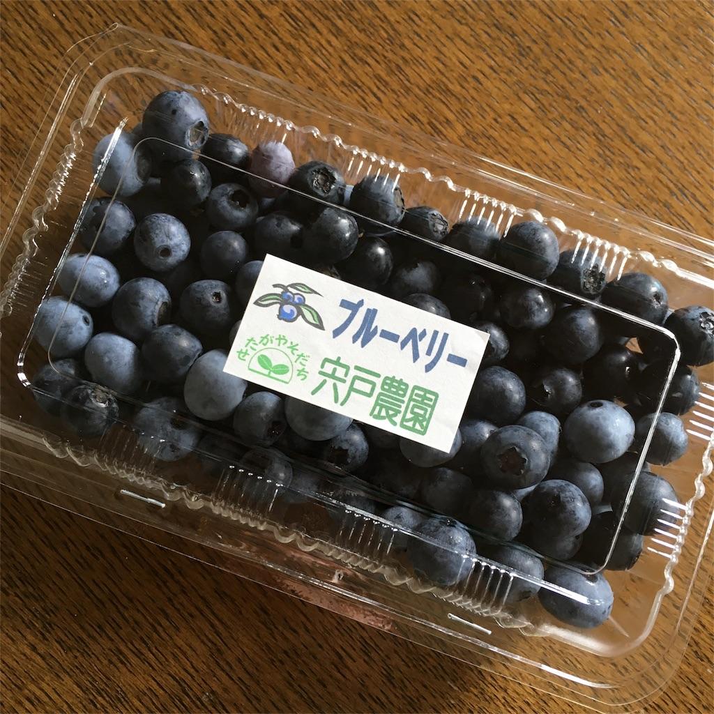 f:id:tsuritsuri:20170820212337j:image