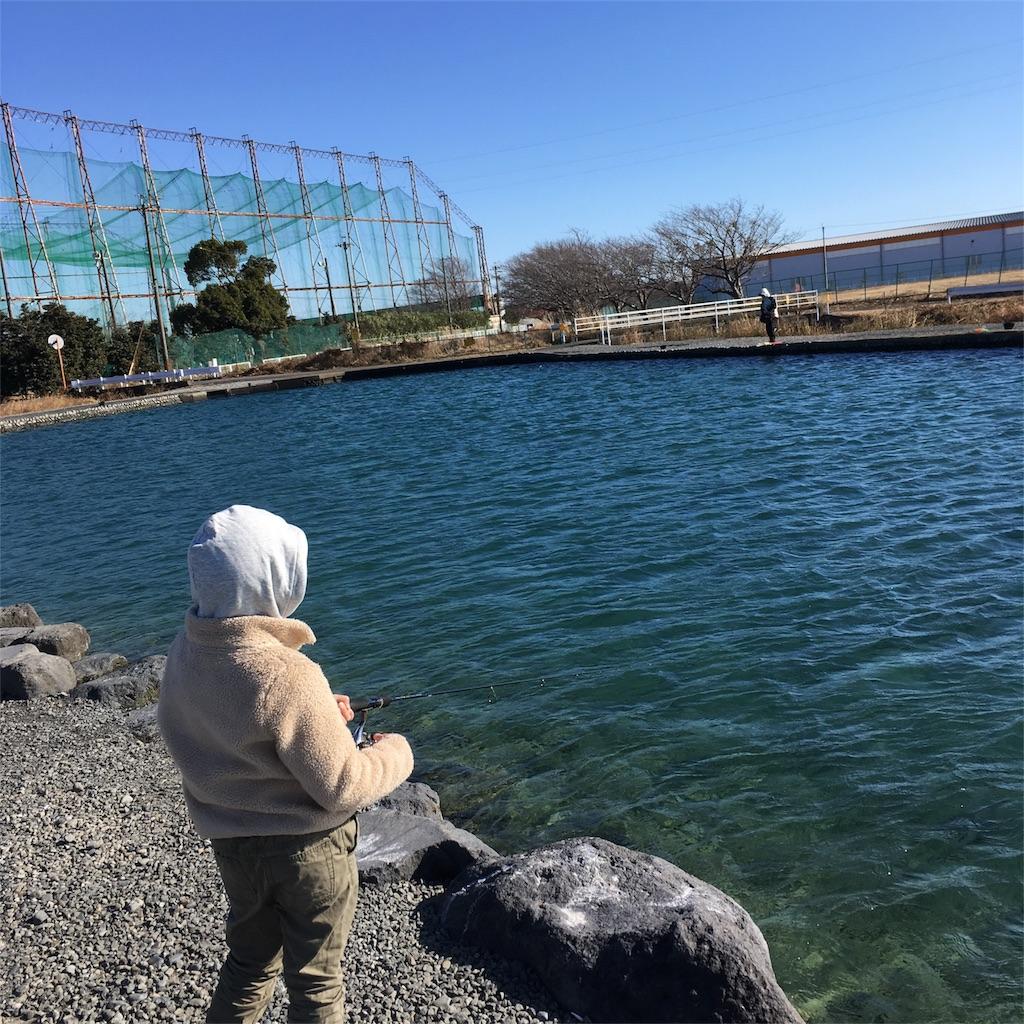 f:id:tsuritsuri:20171229161601j:image