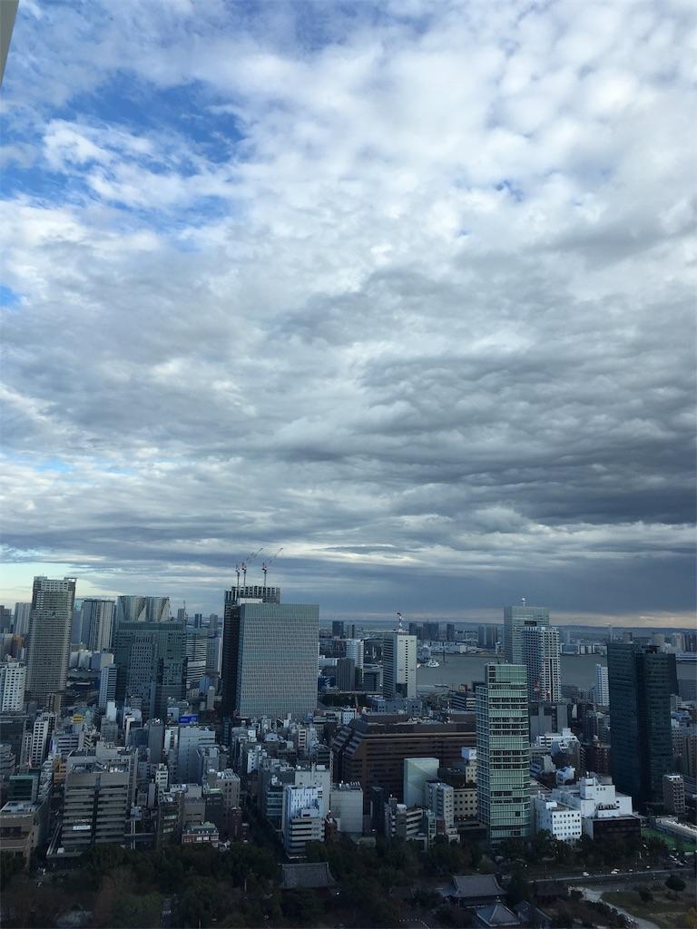 f:id:tsuritsuri:20181229210402j:image
