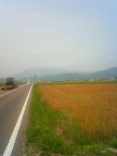 f:id:tsuru-585:20090614132200j:image