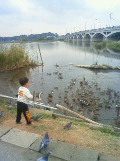 f:id:tsuru-585:20091017115200j:image