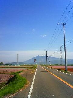 f:id:tsuru-585:20100509202522j:image