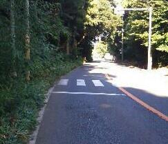 f:id:tsuru-585:20100904174717j:image