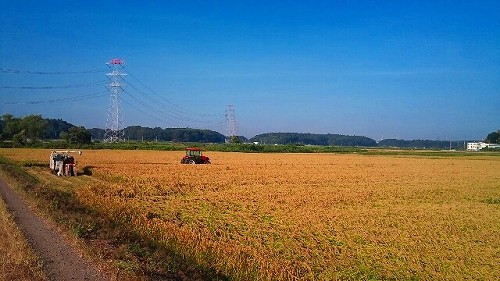 f:id:tsuru-585:20100904202406j:image