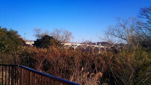f:id:tsuru-585:20110305150654j:image