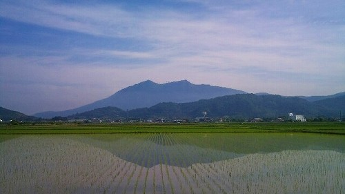 f:id:tsuru-585:20120527002357j:image