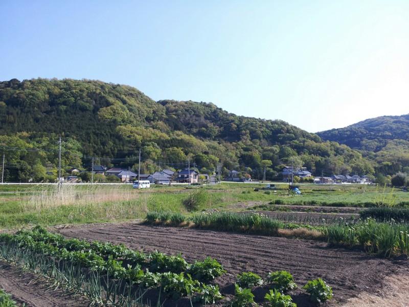 f:id:tsuru-585:20130427201802j:image:w640