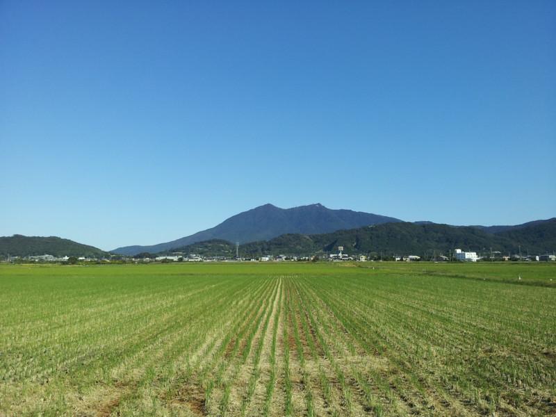 f:id:tsuru-585:20131013174239j:image:w640