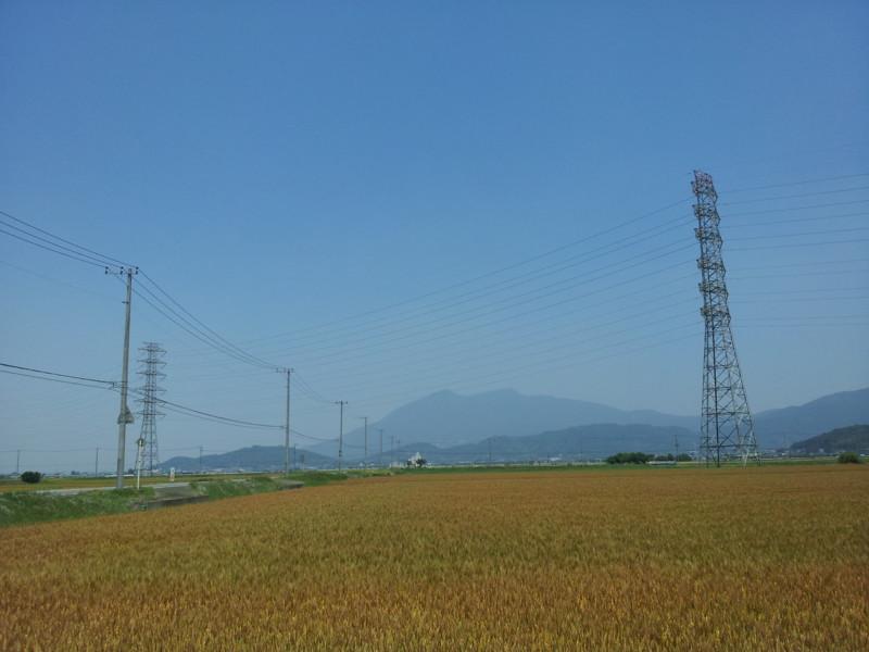 f:id:tsuru-585:20140601150023j:image:w640