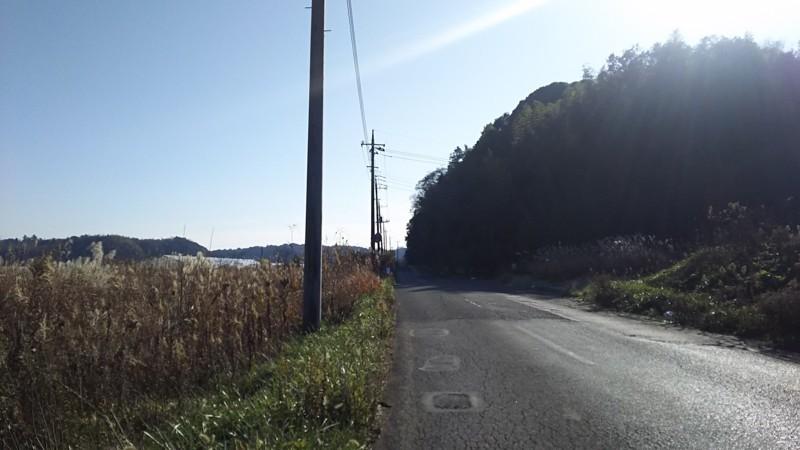 f:id:tsuru-585:20171210115835j:plain