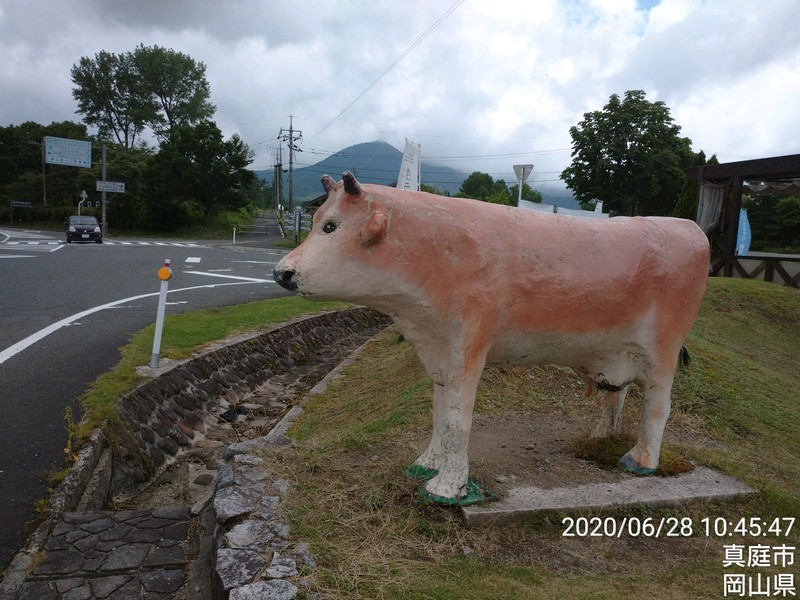 f:id:tsuru-585:20200628193119j:plain
