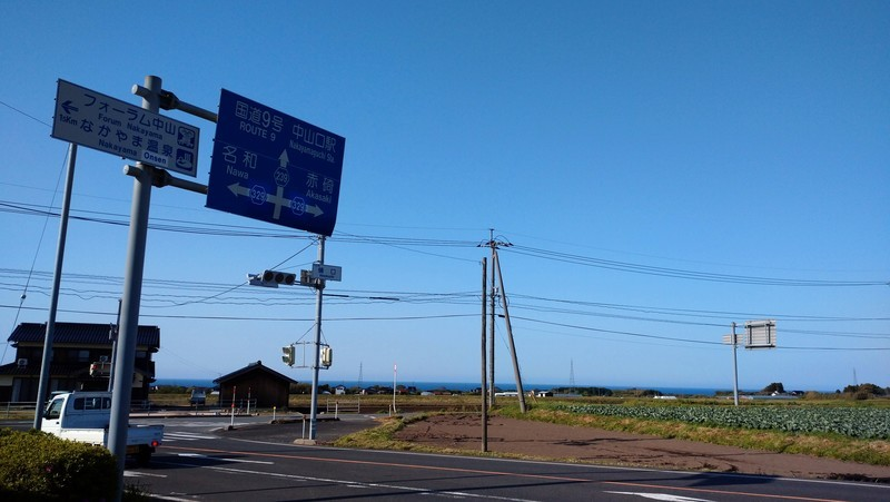 f:id:tsuru-585:20210510213114j:plain