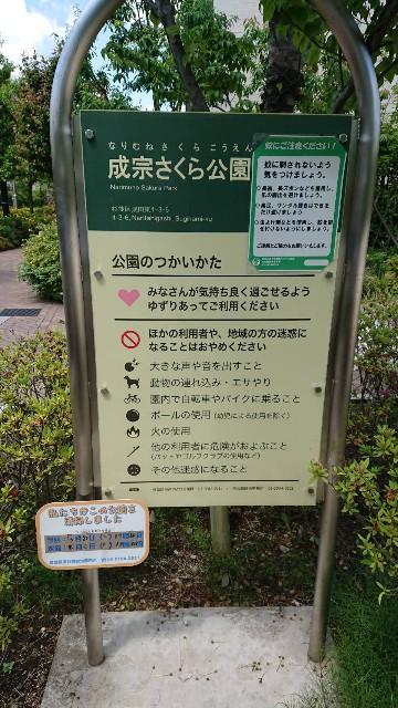 f:id:tsuru-life:20210604223255j:image