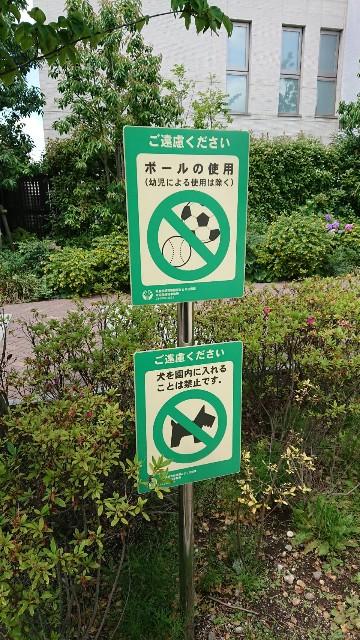 f:id:tsuru-life:20210604230025j:image