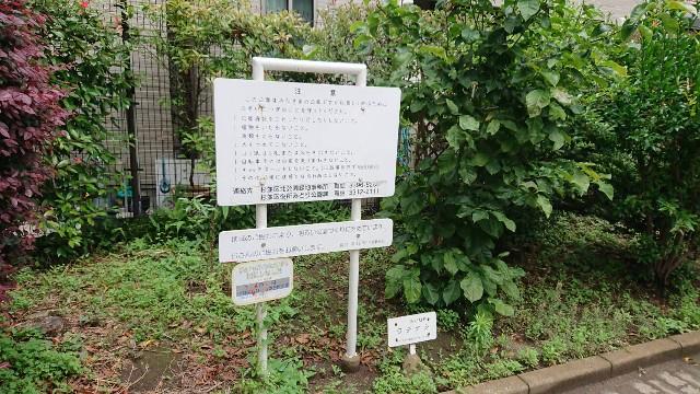 f:id:tsuru-life:20210605114417j:image