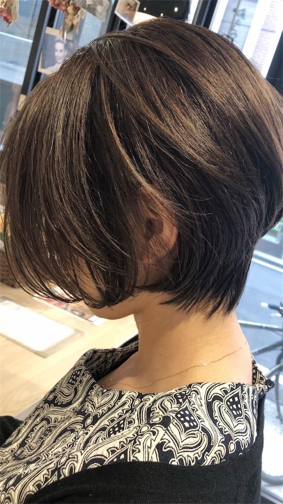 f:id:tsurugichishinji:20181006082409j:image