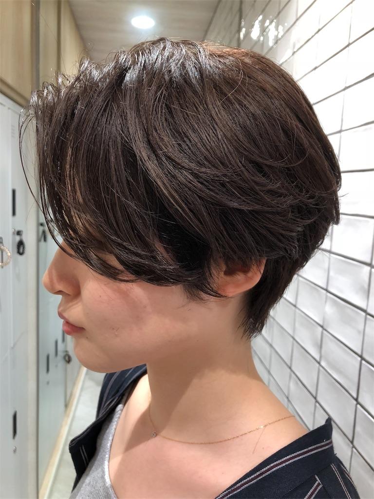f:id:tsurugichishinji:20181006082537j:image