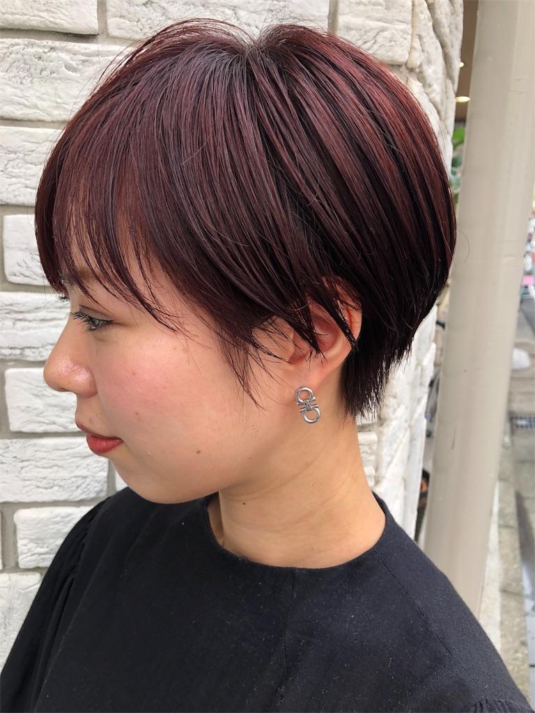 f:id:tsurugichishinji:20181006082723j:image