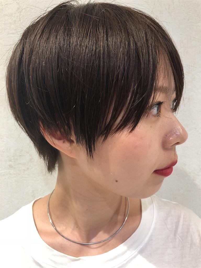 f:id:tsurugichishinji:20181008084434j:image