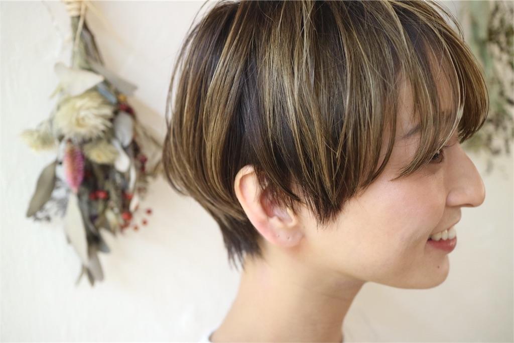 f:id:tsurugichishinji:20181011101930j:image