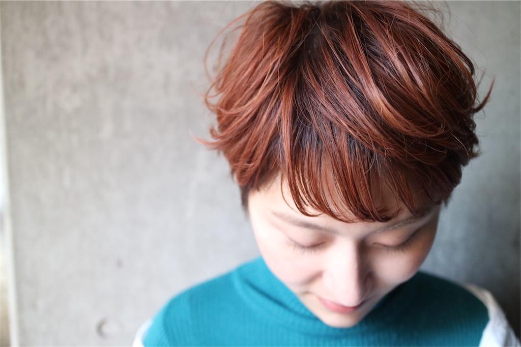 f:id:tsurugichishinji:20181021213929j:image