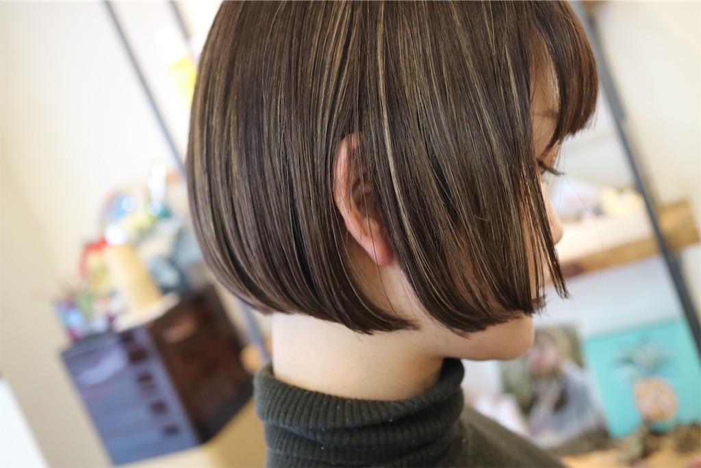 f:id:tsurugichishinji:20181206224651j:image