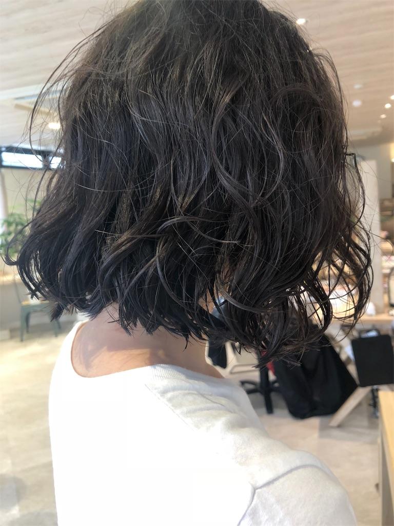 f:id:tsurugichishinji:20181206224730j:image