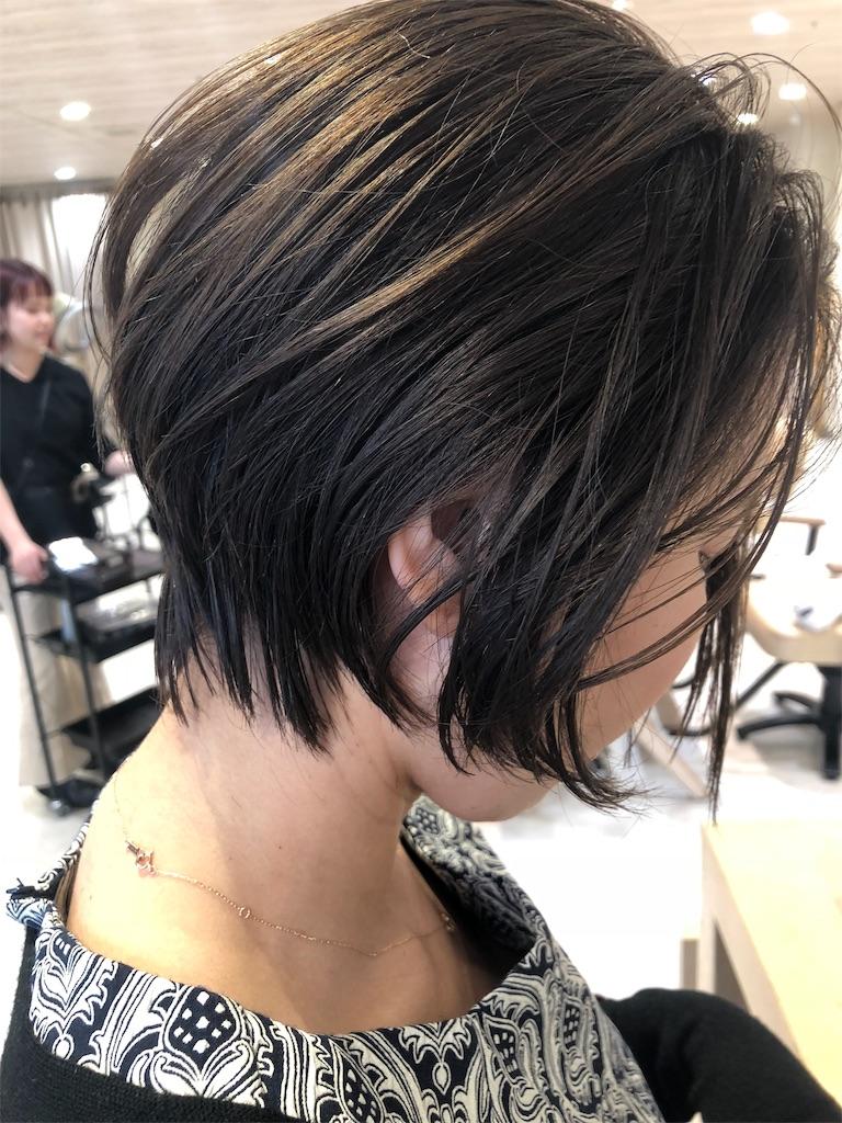 f:id:tsurugichishinji:20181211094506j:image