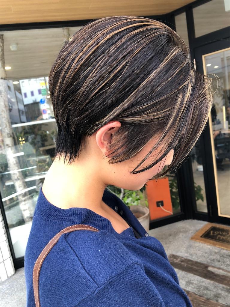 f:id:tsurugichishinji:20181211094546j:image