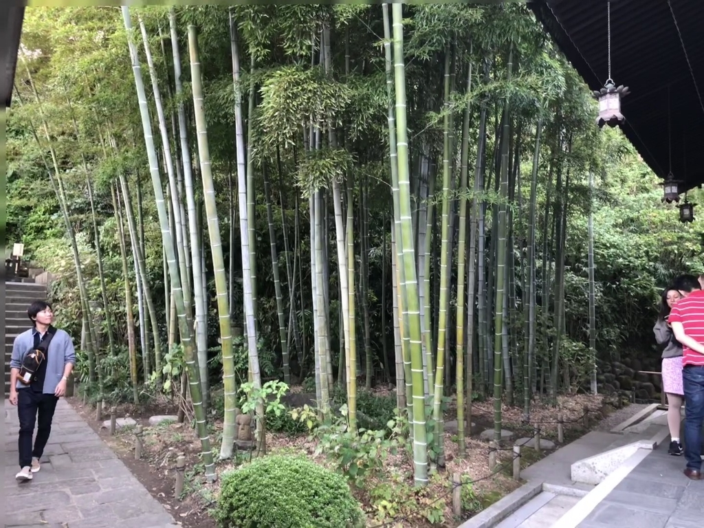 f:id:tsuruoka-eigo:20190306160005j:plain
