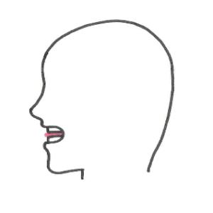 4技能英語教育研究家、鶴岡俊樹オフィシャルブログ 「TH」発音時の口の形