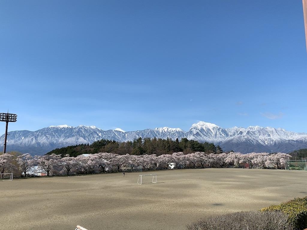 f:id:tsururiko:20200418110115j:image