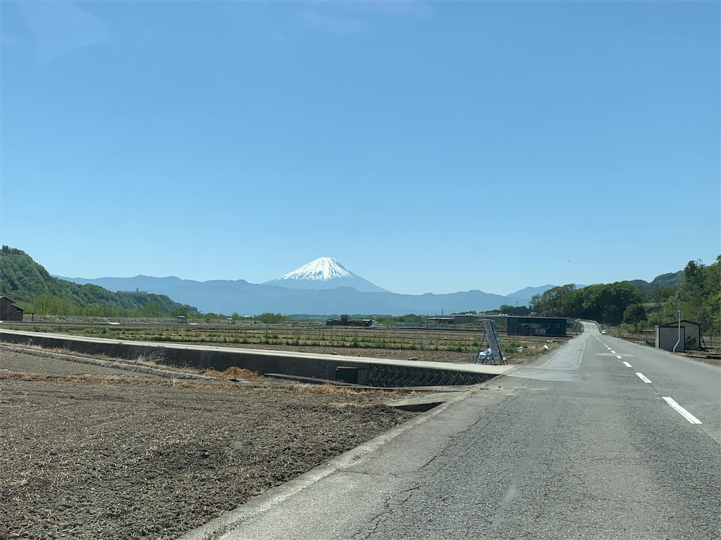f:id:tsururiko:20200528153225j:image