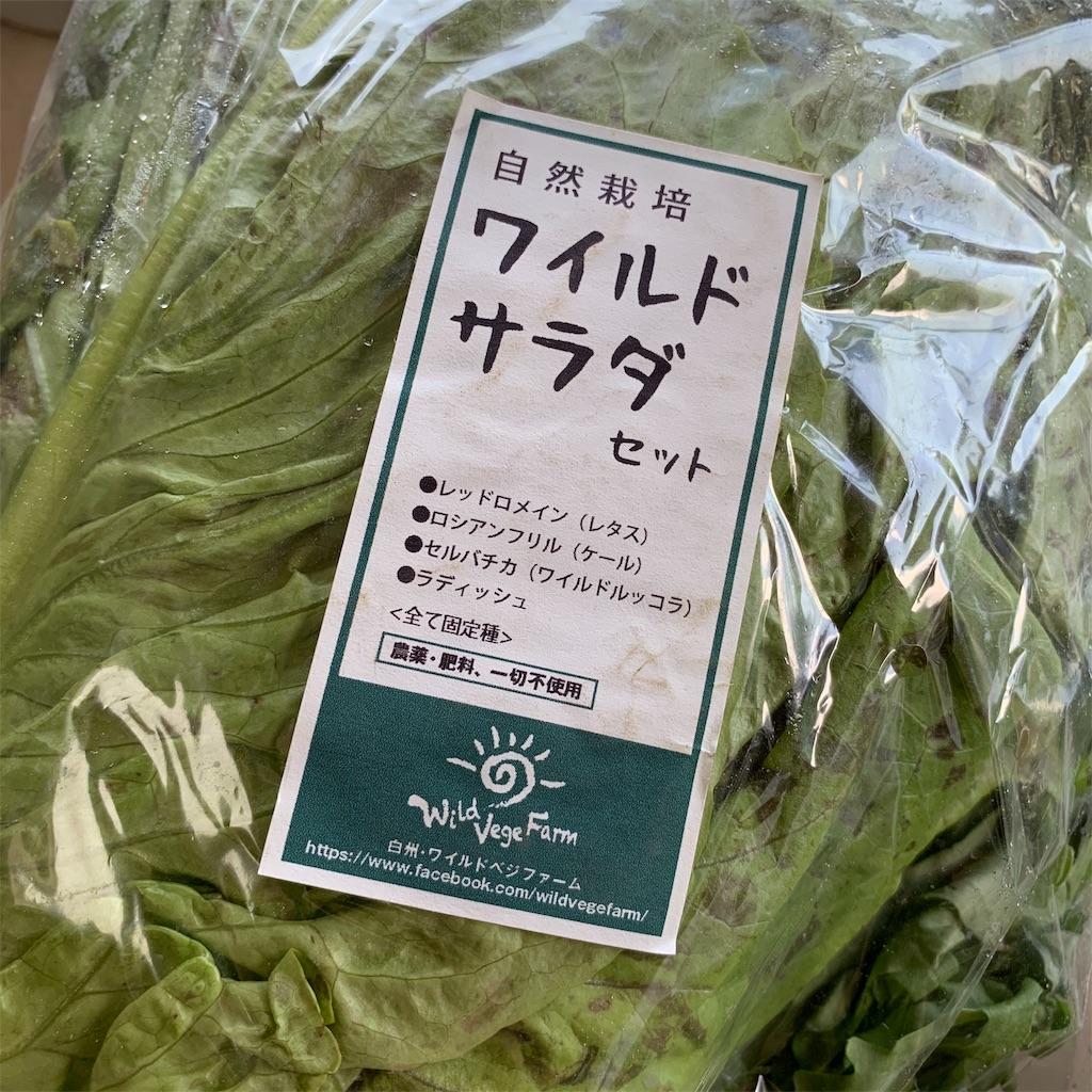f:id:tsururiko:20200612053532j:image