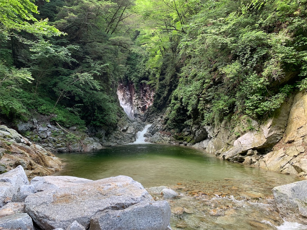 f:id:tsururiko:20200626085458j:image