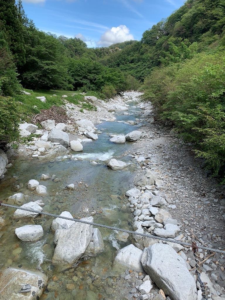 f:id:tsururiko:20200626085804j:image