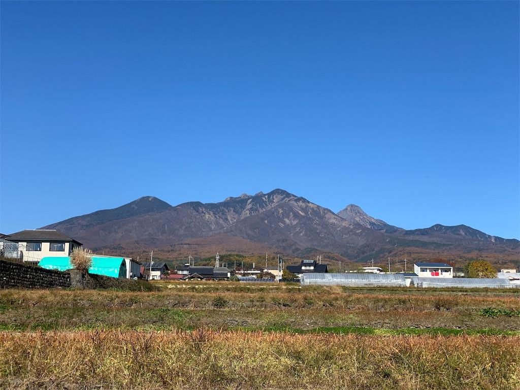 f:id:tsururiko:20201111194244j:image