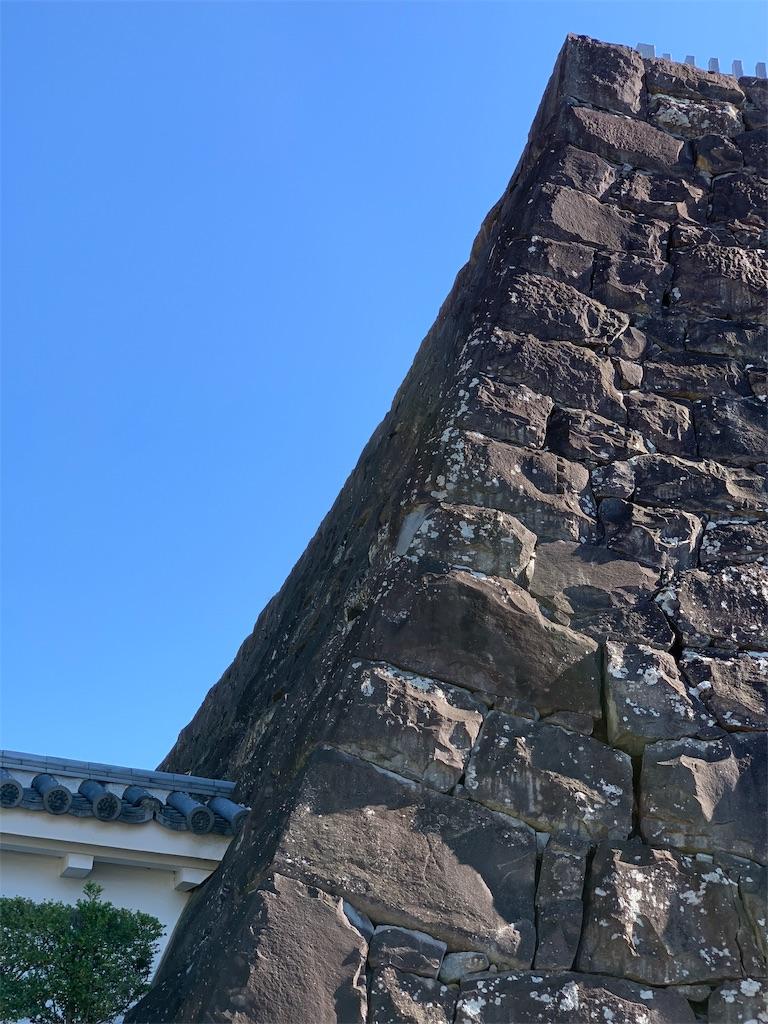 f:id:tsururiko:20201121221554j:image