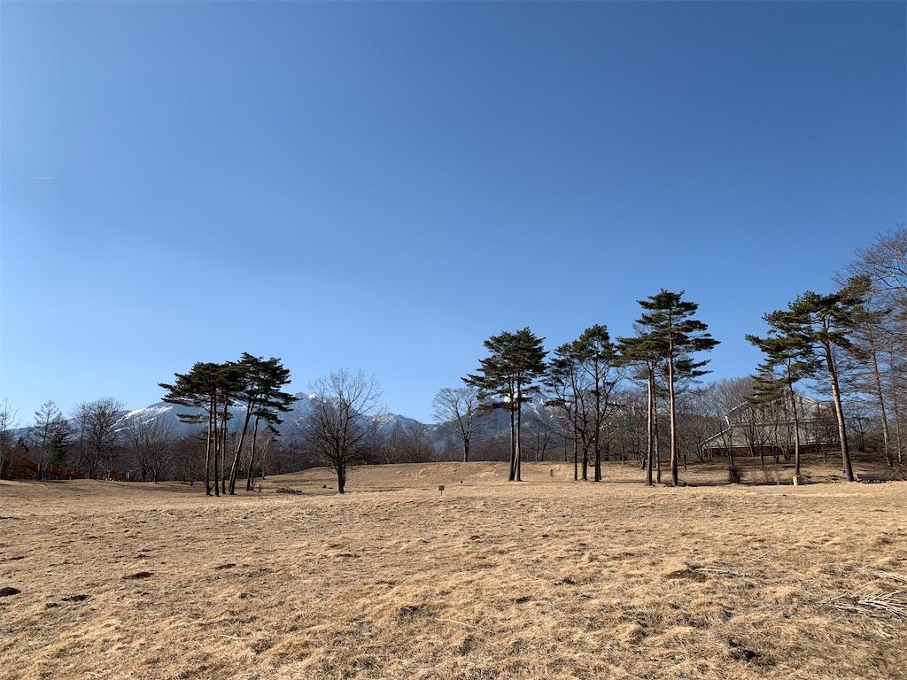 f:id:tsururiko:20210306175036j:image
