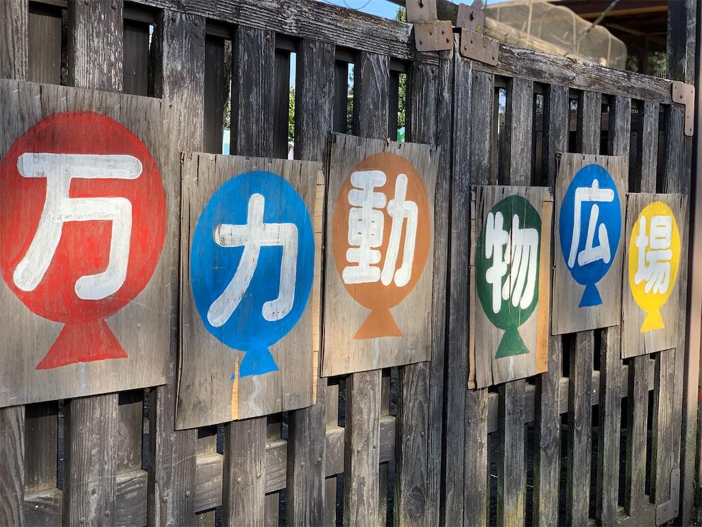 f:id:tsururiko:20210309112450j:image