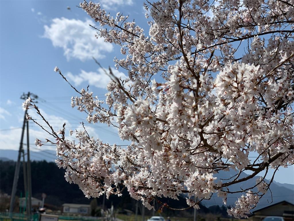 f:id:tsururiko:20210327163156j:image